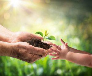 6 maneras de vivir de manera más sostenible